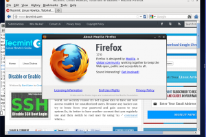 Firefox 17 screenshot