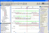 CLC DNA Workbench screenshot