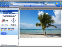 Weather Theme for Internet Explorer screenshot