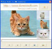Doremisoft Video to BMP Converter screenshot