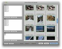 ImageIngesterPro for Mac OS X screenshot
