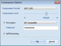 Backup MySQL to ZIP Password screenshot
