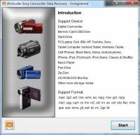BYclouder Sony Camcorder Data Recovery screenshot