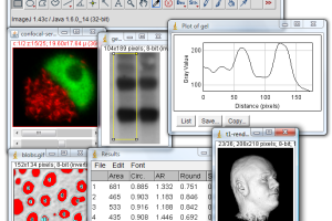 ImageJ screenshot