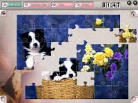 Pastime Puzzles Deluxe The Fifties screenshot