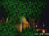 Free Matrix Reality Screensaver screenshot