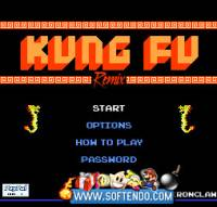 The Kung fu Master screenshot