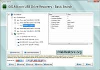 Disk Restore Software screenshot