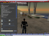 Second Life for Linux screenshot