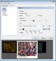 crack para microsoft expression web 3